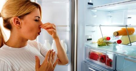 Устранение вони из холодильника